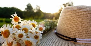 Straw,Hat,With,Live,Daisies,Against,The,Background,Of,A